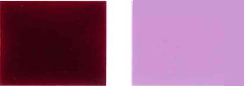 वर्णक हिंसक-19- रंग